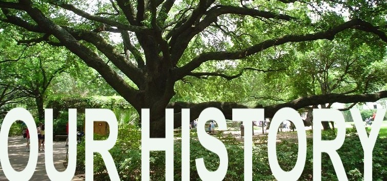 Our History2